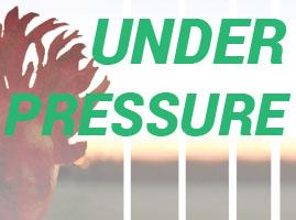 2-under-pressure-tile