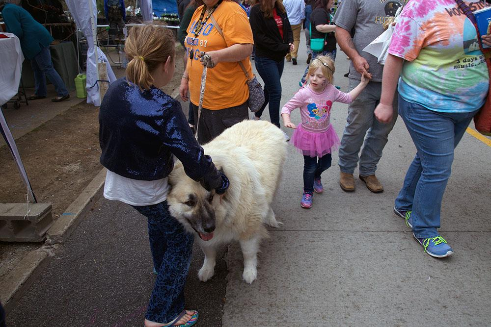 It is a dog lovers paradise; however, coalition members advised not to bring dogs to the festival